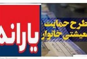 یارانه معیشتی بهمن پنج شنبه  واریز میشود