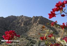 تصویب منطقه حفاظت شده انزان شهرستان مشگین شهر
