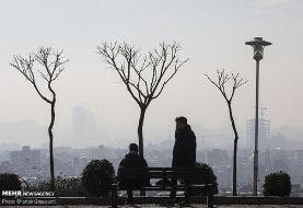 مشهد، هفتهای که در آلودگی هوا گذشت