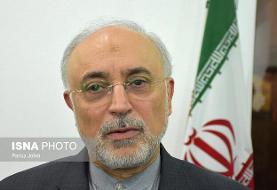 هشدار صالحی نسبت به صدور قطعنامه ضد ایرانی در شورای حکام