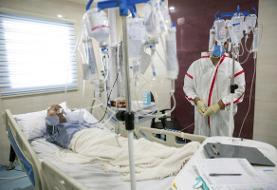 کرونا دوباره اوج گرفت/ مرگ ۲۷۶ بیمار در شبانه روز