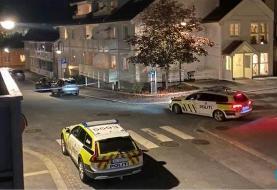 چندین کشته و زخمی در حمله مردی با تیر و کمان در نروژ