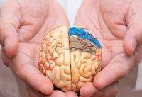ارتباط ویژگی&#۸۲۰۴;های شخصیتی و علائم بیماری آلزایمر