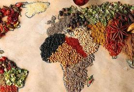 بیش از ۳ میلیارد نفر به رژیمغذایی مغذی دسترسی ندارند