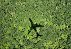 سوخت گیاهی برای هواپیماهای جت؛ گزینه ای سبز و دوستدار محیط زیست