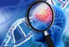 ارتباط خصایص شخصیتی با علامت اصلی بیماری آلزایمر