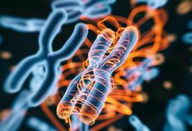 نتایج امیدبخش درمان سرطان و کرونا با روش کریسپرپایه/پیشنهاد محققان برای توسعه کریسپر در کشور