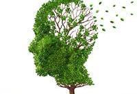 اکلیل کوهی درمانی برای آلزایمر