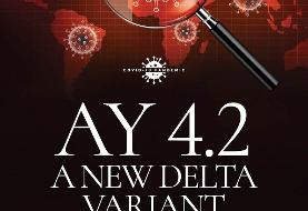 آنچه درباره زیرسویه جدید AY.۴.۲ کروناویروس میدانیم؟