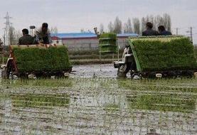 رشد ۹۲ درصدی پرداخت تسهیلات مکانیزاسیون توسط بانک کشاورزی