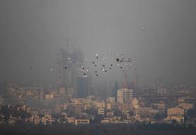 خسارت ۲.۶ میلیاددلاری آلودگیهوا به تهران   کدام منابع بیشترین سهم را در آلودگیهوای پایتخت دارند؟