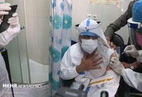 شناسایی ۲۴ مورد ابتلا به ویروس انگلیسی در کشور