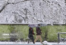 کاهش ۱۸ درجهای دمای هوا در برخی نقاط کشور/ آسمان تهران برفی میشود