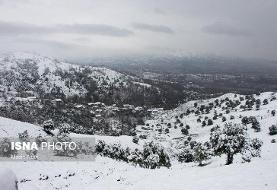 (تصاویر) بارش برف در روستای «تابستان نشین»