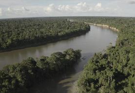 تحقیق بیبیسی: چگونه غیرقانونی جنگل آمازون را میفروشند؟