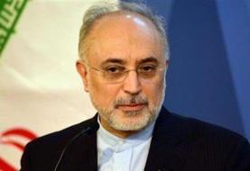 علی اکبر صالحی: در چارچوب تعیین شده از سوی مسئولان ارشد حرکت کردیم