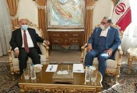 دیدار وزیر امور عراق با شمخانی (+عکس)