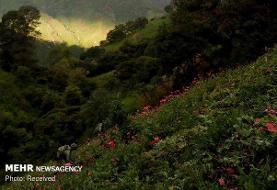نمایشگاه آثار سرامیک و عکاسی از کشاورزی سنت مکزیک برپا شد