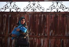 راهیابی ۴ فیلم هنرمند دزفولی به جشنواره آمریکا