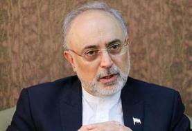 هشدار صالحی درباره قطعنامه ضد ایرانی در شورای حکام