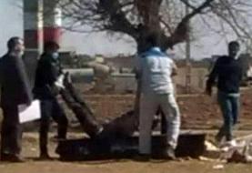 خراسان رضوی/ کشف جسد مرد جوان داخل گونی در نیشابور (+عکس)