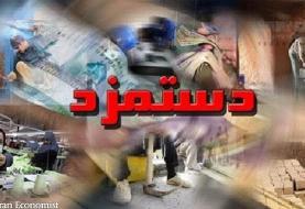 آغاز جلسات شورای عالی کار با دستور کار