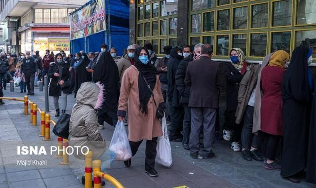 وزیر جهاد کشاورزی برای بحران مرغ از مردم ایران عذرخواهی کرد