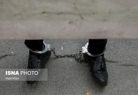 دستگیری یک قاچاقچی بزرگ دارو پس از بازگشت به کشور