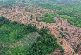 اسناد مربوط به آب، خاک، اقلیم و منابع طبیعی بررسی شد