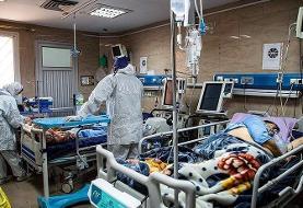 یکچهارم مرگهای روزانه کرونا در خوزستان اتفاق میافتد