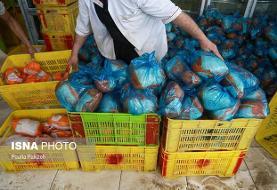 الهیان خواستار روشنگری درباره ترخیص ۵۰ هزار تن مرغ از گمرک شد