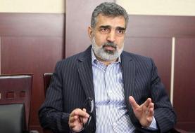 کمالوندی: نشست ایران و آژانس در سطح معاون مدیرکل خواهد بود