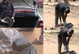 کشف سر بریده انسان در صندوق عقب خودرو! (۱۶+)