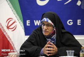 احزاب ایران صدای مردم نبودند/ باید مشارکت در انتخابات بالا برود