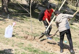 کاشت ۸۰ نهال توسط کودکان کار و خیابان در پارک طالقانی