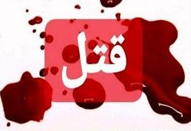 جوان موزیسین برای آدمکشی، دو نفر را اجیر کرد/ دستمزد قتل۱۲هزار دلار