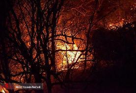 چرا مهار آتش در جنگل چند روز طول میکشد؟