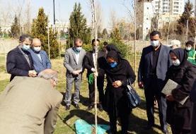 کاشت درخت به پاس اهداکنندگان کالبد آموزشی