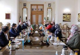 در دیدار ظریف و وزیر خارجه ایرلند چه گذشت؟