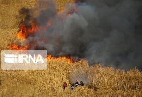 طرح بیمه آتشسوزی مزارع و باغ ها تدوین شد