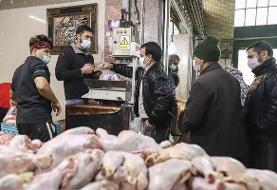 بازدید سرزده وزیر جهاد کشاورزی از میادین  عرضه مرغ در تهران   مرغ به اندازه کافی موجود است