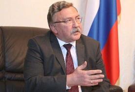 دیدار «اولیانوف» با «رابرت مالی» در خصوص احیای کامل برجام