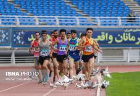 کبوترهای دردسرساز در مسابقات دوومیدانی مشهد + عکس