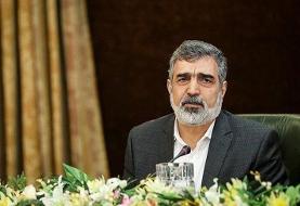 سقوط سخنگوی سازمان انرژی اتمی از ارتفاع ۷ متری در نطنز