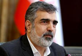 سخنگوی سازمان انرژی اتمی ایران در پی سقوط از ارتفاع مجروح شد