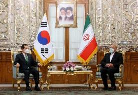 پولهای بلوکه ایران آزاد شود/ انتظار ما از کره جنوبی برآورده نشد