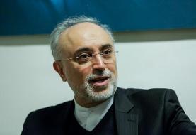 صالحی: اورانیوم ۶۰ درصد ربطی به سوخت راکتور تهران ندارد/ غنیسازی در نطنز متوقف نشده است