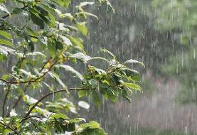 وزش باد شدید و رگبار باران در ۱۲ استان