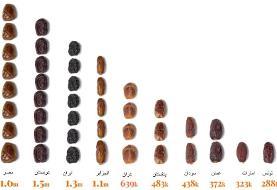 اینفوگرافیک ا آنچه از خرما نمیدانید: گونهها و گران قیمتترین خرما در جهان ا تجارت جهانی آن ...