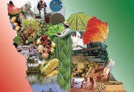 برنامه ۳۳ گانه فناورانه برای ایجاد امنیت غذایی در کشور/تولید ۷ ماده افزودنی صنایع غذایی